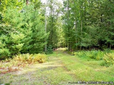 Accord Residential Lots & Land For Sale: Lot # 2 Chris Lane