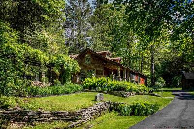 Big Indian, Chichester, High Mount, Highmount, Mt. Tremper, Mt.tremper, Phoenecia, Phoenicia, Pine Hill, Shandaken, Shandaken/big Indian, Shandanken Single Family Home For Sale: 175 Peck Hollow Road