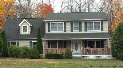New Paltz Single Family Home For Sale: 44 N Ohioville