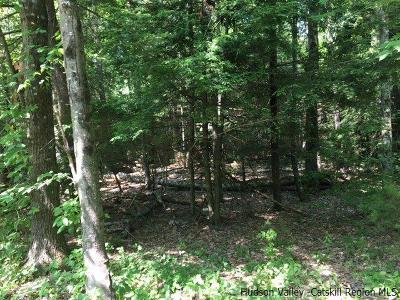 Mt. Tremper NY Residential Lots & Land For Sale: $149,000