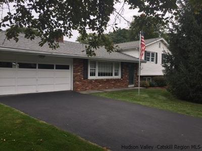 Hurley Single Family Home Accepted Offer Cts: 148 Apple Hill