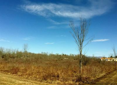 Accord Commercial Lots & Land For Sale: 5186 Us Route 209 Highway