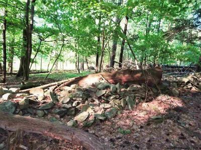 Woodstock Residential Lots & Land For Sale: Kings Edge Lane