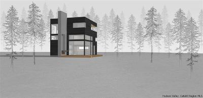 Kerhonkson Single Family Home For Sale: 20 Trout Creek Road
