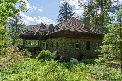 Big Indian, Chichester, High Mount, Highmount, Mt. Tremper, Mt.tremper, Phoenecia, Phoenicia, Pine Hill, Shandaken, Shandaken/big Indian, Shandanken Single Family Home For Sale: 575-585 Plank Rd
