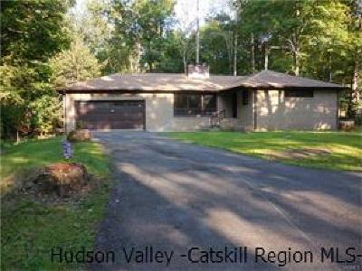 New Paltz Single Family Home For Sale: 362 N State Route 32 Route