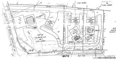 Commercial Lots & Land For Sale: Lots 1, 2 And3 Route 44/55