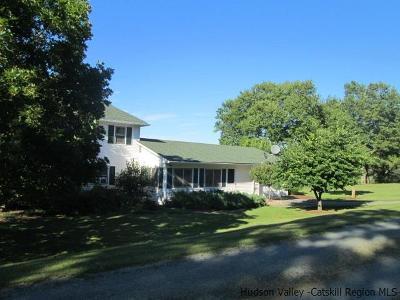 Ellenville, Elleville Single Family Home For Sale: 1062 South Hill