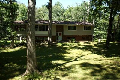 Woodstock Single Family Home For Sale: 14 Whitney Drive