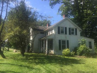 Single Family Home For Sale: 2878 Route 209