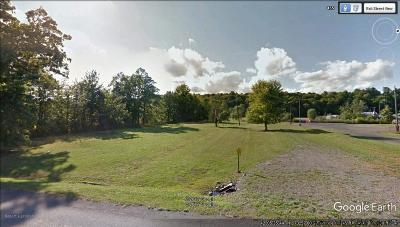 Saugerties Commercial Lots & Land For Sale: 447 Washington Ave Extension