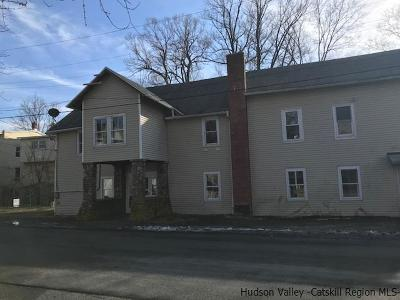 Clintondale Multi Family Home For Sale: 7 Mill