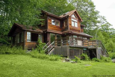 Phoenicia Single Family Home For Sale: 1244 Woodland Valley Road