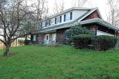 Ulster Park Single Family Home For Sale: 326 Union Center Road