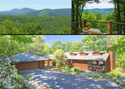 Big Indian, Chichester, High Mount, Highmount, Mt. Tremper, Mt.tremper, Phoenecia, Phoenicia, Pine Hill, Shandaken, Shandaken/big Indian, Shandanken Single Family Home For Sale: 219 The Middle Way