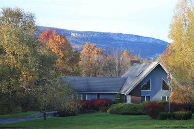 Wallkill Single Family Home For Sale: 40 Tillson Lake Road