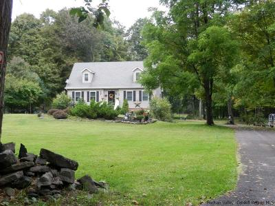 New Paltz Single Family Home For Sale: 549 Swarte Kill
