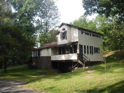 Ulster Single Family Home For Sale: 194a North Drive