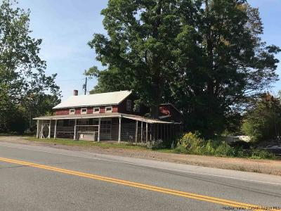 Delaware County Commercial For Sale: Ny State Route # 28 Route