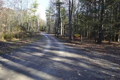 Saugerties NY Residential Lots & Land For Sale: $79,000