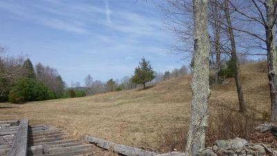 Residential Lots & Land For Sale: 75 Alexander