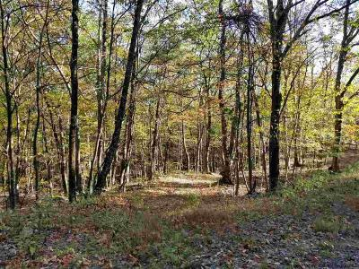 Residential Lots & Land For Sale: County Road 3