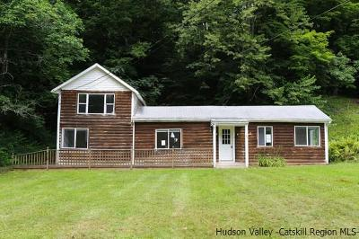 Shandaken Single Family Home For Sale: 49 Broadstreet Hollow Road