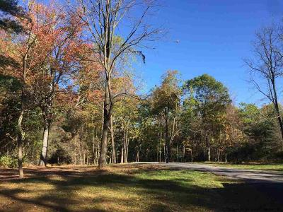 Stone Ridge Residential Lots & Land For Sale: 4606 Atwood Road