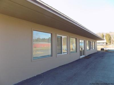 Shokan NY Commercial For Sale: $199,000