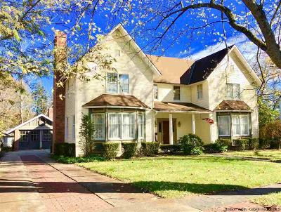 Saugerties Multi Family Home For Sale: 9 Cedar Street