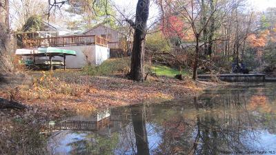 Saugerties Single Family Home For Sale: 210 Esopus Creek Road