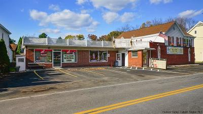 Commercial For Sale: 735 Springtown Road