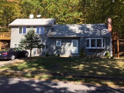 Marbletown Single Family Home For Sale: 412 Lapla Road