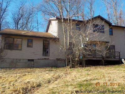 Red Hook Single Family Home For Sale: 110 Guski Road