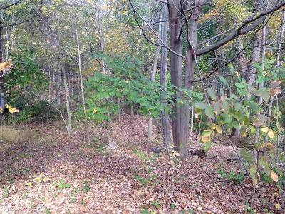 Saugerties Residential Lots & Land For Sale: Glasco Turnpike
