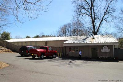 Ulster Park NY Commercial For Sale: $299,000