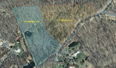 Pine Bush NY Residential Lots & Land For Sale: $69,000