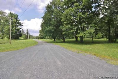 Saugerties Residential Lots & Land For Sale: 105 Stephens Drive