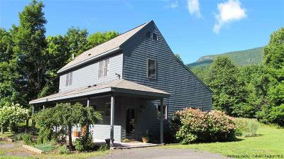 Woodstock Single Family Home For Sale: 657 West Saugerties Woodstock Road