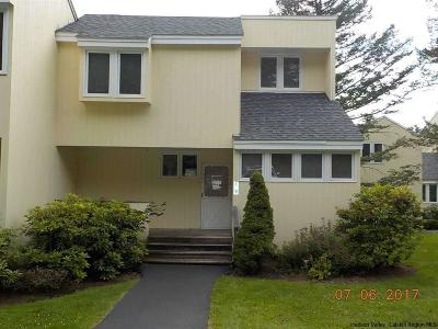 Delaware County Townhouse For Sale: 210 Mountainside Circle