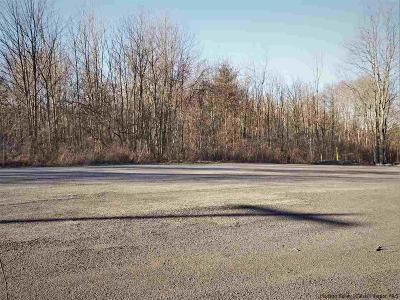 Saugerties Commercial Lots & Land For Sale: 51 Industrial Drive