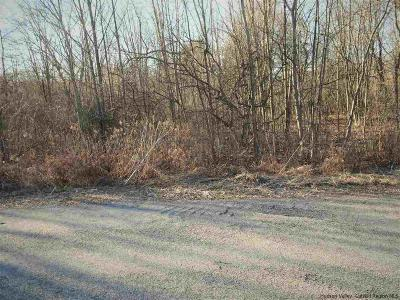 Saugerties Commercial Lots & Land Fully Executed Contract: 54 Industrial Drive