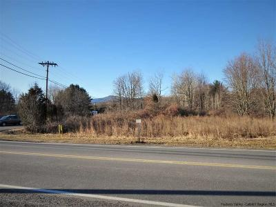 Saugerties Commercial Lots & Land For Sale: 12 Industrial Drive