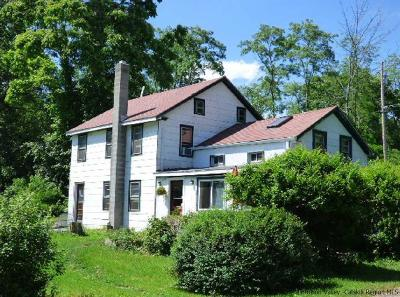 Saugerties Single Family Home For Sale: 17 Stay Road