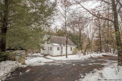 Saugerties Single Family Home For Sale: 255 Blue Mountain Road