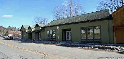 Delaware County Commercial For Sale: 850 Main Street