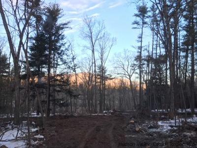 Saugerties Residential Lots & Land For Sale: Haviland Court