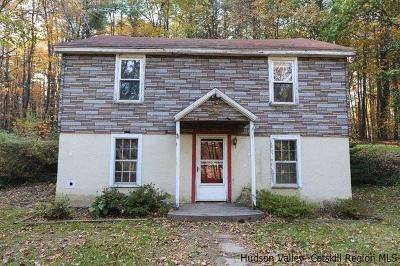 Saugerties Single Family Home For Sale: 271 High Falls Road