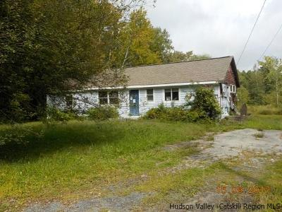 Tivoli Single Family Home For Sale: 299 Lasher Road
