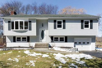 Single Family Home For Sale: 371 N Elting Corners Road